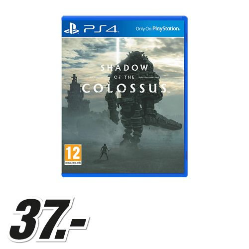 Foto Shadow of the Colossus