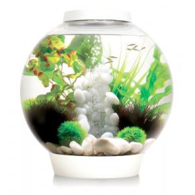 Foto BiOrb Classic aquarium 60 liter LED wit