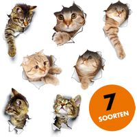 Foto 3D toilet stickers met poes, wc bril stickers, wc stickers, poezen stickers, katten stickers