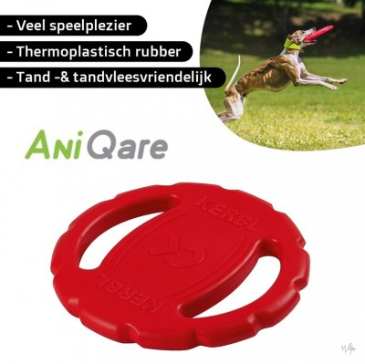 Foto ToyFastic Frisbee