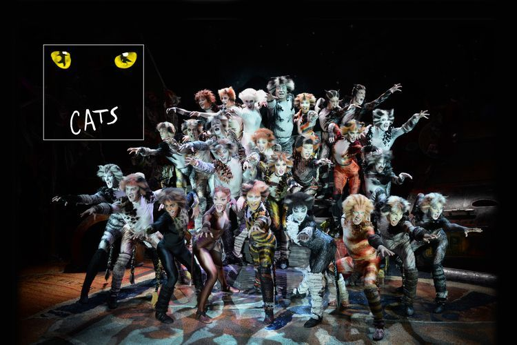 Foto CATS - De internationale hitmusical (2 p.)